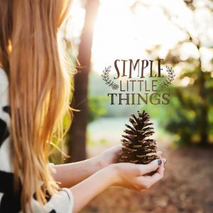 Simple Little Things Logo – Free Download