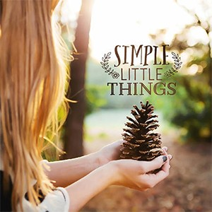 simple little things to cherish